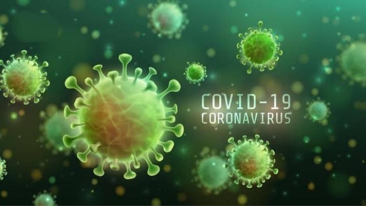 Kasus Covid-19 Di Rohul Bertambah 13 Orang, Sembuh 4, Masih Dalam Perawatan 4